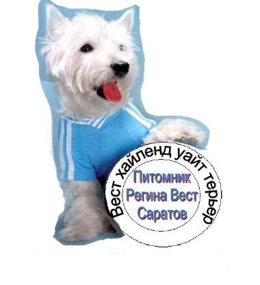 http://sh.uploads.ru/ixkRa.jpg