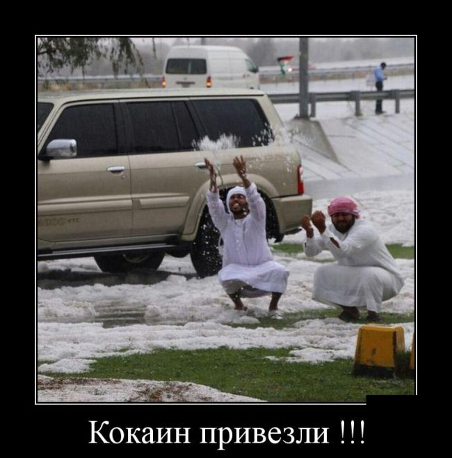 http://sh.uploads.ru/kupBt.jpg