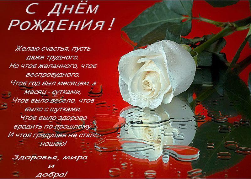http://sh.uploads.ru/lNYLg.jpg