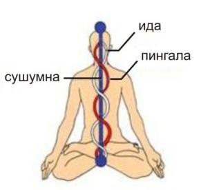http://sh.uploads.ru/lWjNJ.jpg