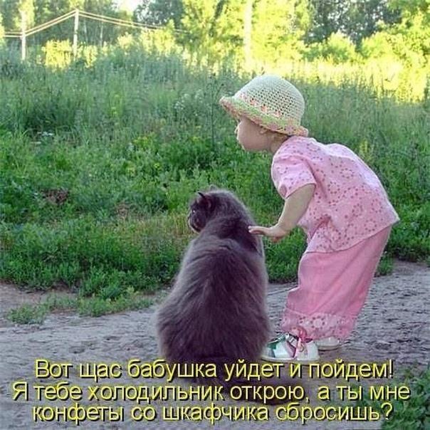 http://sh.uploads.ru/lj9Mu.jpg