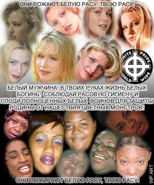 http://sh.uploads.ru/lz8u6.jpg