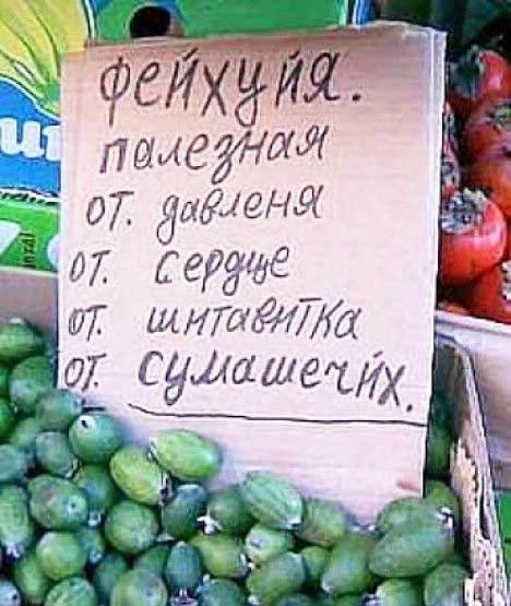 http://sh.uploads.ru/mDiXl.jpg