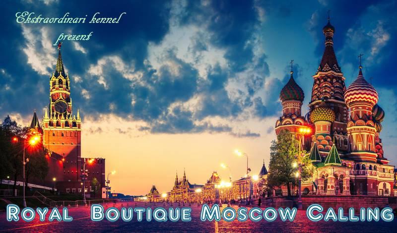 http://sh.uploads.ru/moTXL.jpg