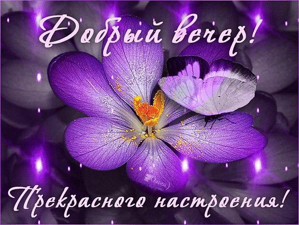 http://sh.uploads.ru/opS7V.jpg
