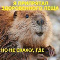 http://sh.uploads.ru/qpRg7.jpg