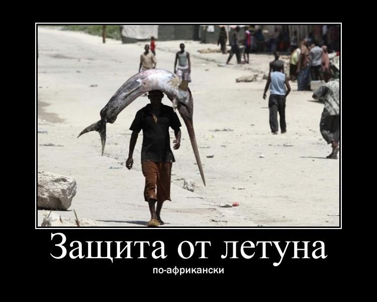 http://sh.uploads.ru/qtSMV.jpg