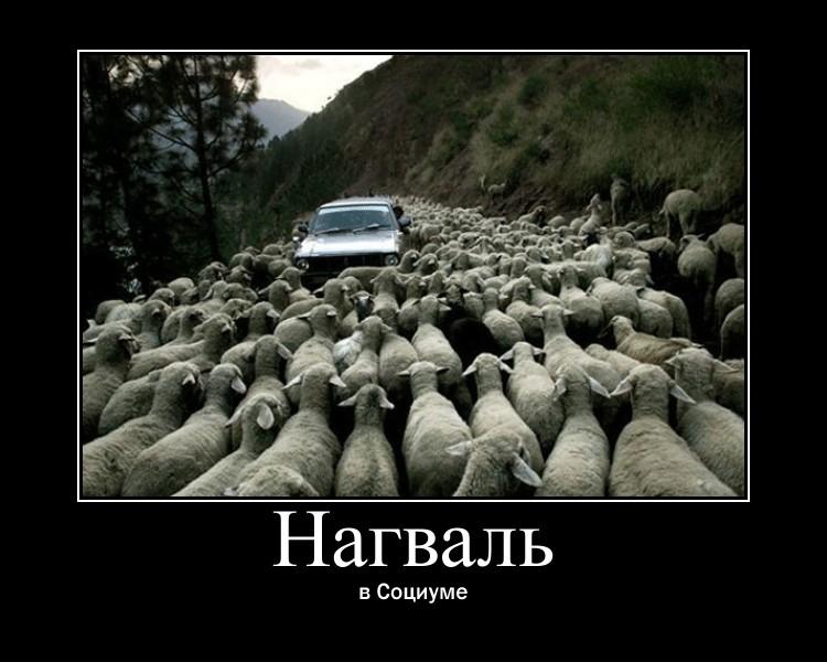 http://sh.uploads.ru/rfeDI.jpg