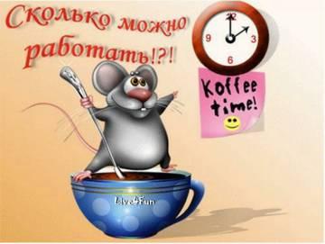 http://sh.uploads.ru/t/073gC.jpg