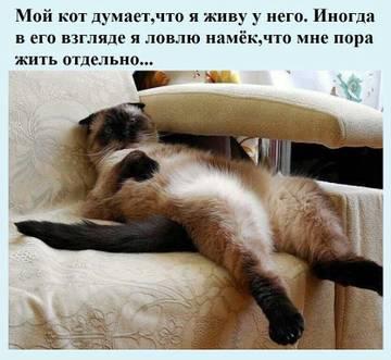 http://sh.uploads.ru/t/07jLd.jpg