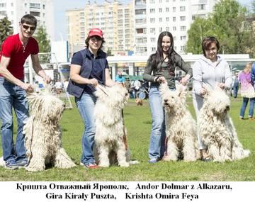 http://sh.uploads.ru/t/0BAWY.jpg