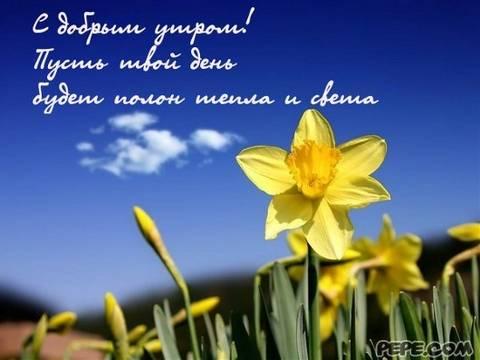 http://sh.uploads.ru/t/0TcFs.jpg