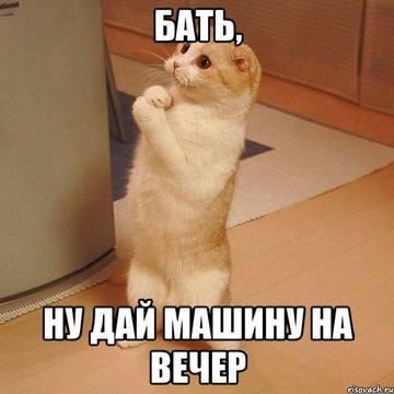 http://sh.uploads.ru/t/0cQMZ.jpg