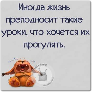 http://sh.uploads.ru/t/0uZWJ.jpg