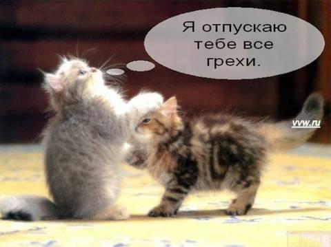 http://sh.uploads.ru/t/10qjH.jpg