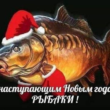 http://sh.uploads.ru/t/13Klt.jpg