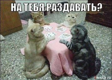 http://sh.uploads.ru/t/1VXxU.jpg