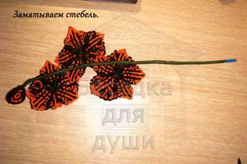 http://sh.uploads.ru/t/1gnh4.jpg