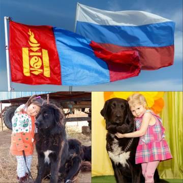 http://sh.uploads.ru/t/25jBo.jpg