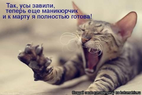 http://sh.uploads.ru/t/271FL.jpg