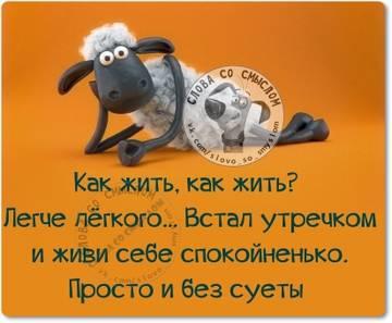 http://sh.uploads.ru/t/3INPr.jpg