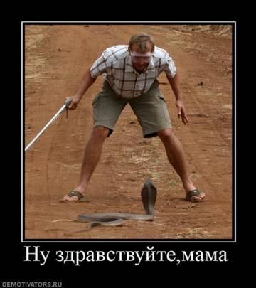 http://sh.uploads.ru/t/3IlwL.jpg