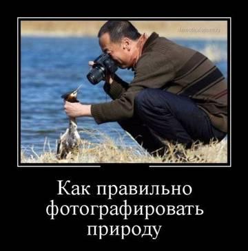 http://sh.uploads.ru/t/3VAFP.jpg