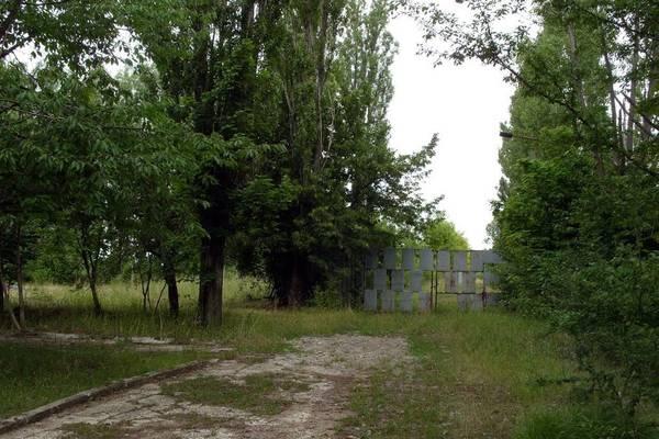 http://sh.uploads.ru/t/3q9ba.jpg