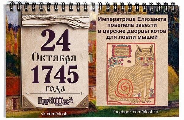 http://sh.uploads.ru/t/45UDO.jpg