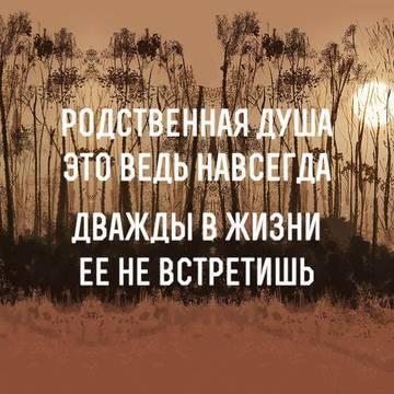 http://sh.uploads.ru/t/4dFyV.jpg
