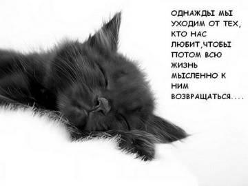 http://sh.uploads.ru/t/4xIhK.jpg