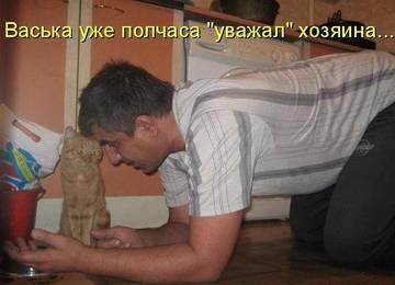 http://sh.uploads.ru/t/5Gzk9.jpg