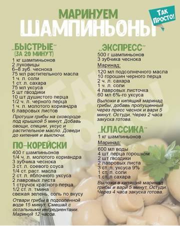 http://sh.uploads.ru/t/5UL6y.jpg