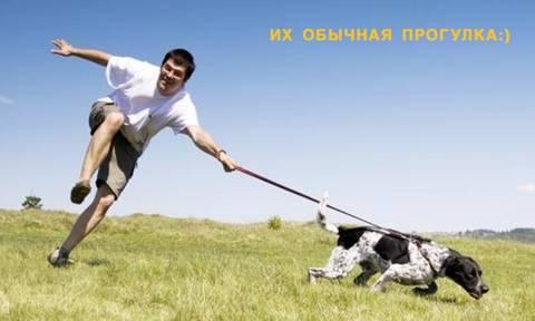 http://sh.uploads.ru/t/5jMfI.jpg