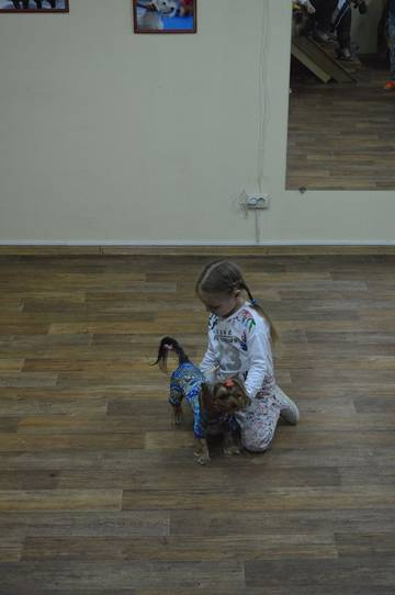 http://sh.uploads.ru/t/6NAG7.jpg