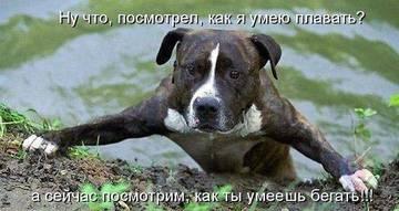 http://sh.uploads.ru/t/6QEWB.jpg