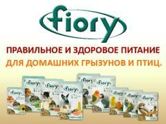 http://sh.uploads.ru/t/6UvI0.jpg