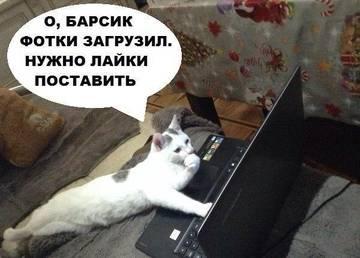 http://sh.uploads.ru/t/7ALlJ.jpg