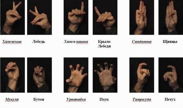 http://sh.uploads.ru/t/7CjKh.jpg