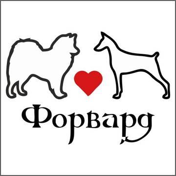 http://sh.uploads.ru/t/7WN1b.jpg