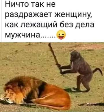 http://sh.uploads.ru/t/7knAi.jpg