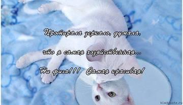 http://sh.uploads.ru/t/7tVw3.jpg
