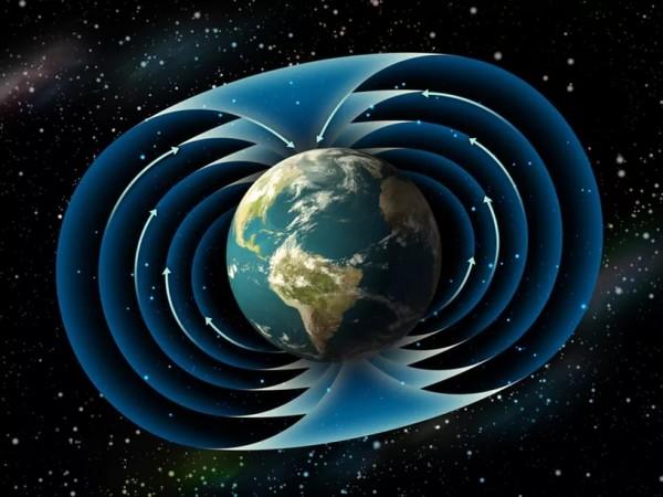 ЖИВАЯ СЕТЬ: что делать с нашим миром?