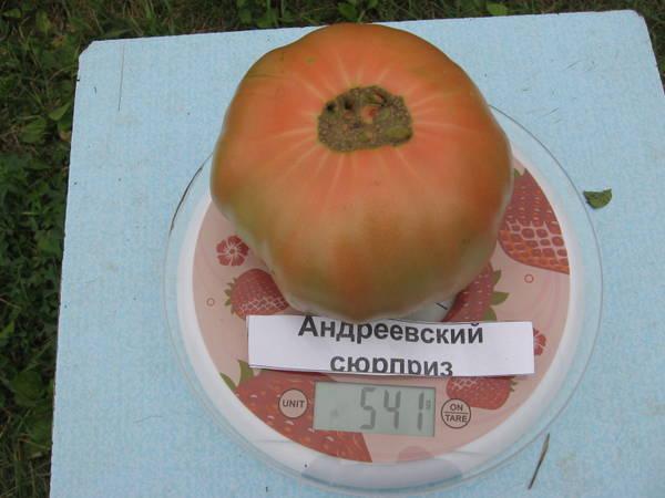 http://sh.uploads.ru/t/8N2sJ.jpg
