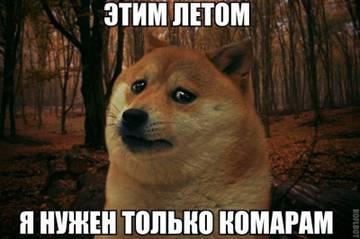 http://sh.uploads.ru/t/8WO6r.jpg