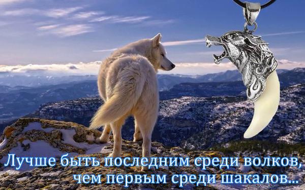 http://sh.uploads.ru/t/8lGaF.png