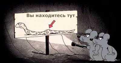 http://sh.uploads.ru/t/8vXHy.jpg