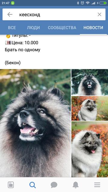 http://sh.uploads.ru/t/8zPCO.png