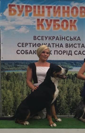 http://sh.uploads.ru/t/968xB.jpg