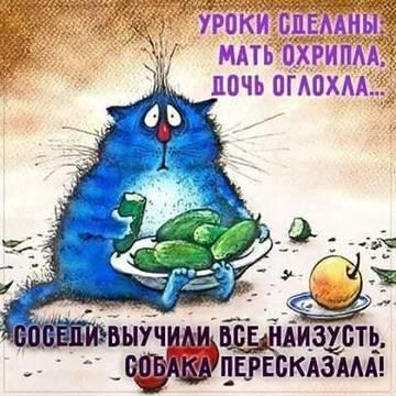 http://sh.uploads.ru/t/9aseB.jpg